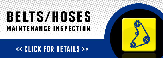 Free Belts - Hoses Maintenance Inspection